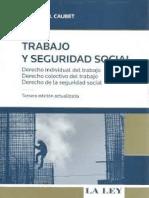Trabajo y Seguridad Social - Amanda Caubet (1).pdf