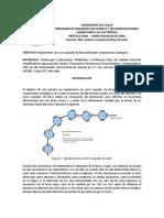 LAB FINAL.pdf