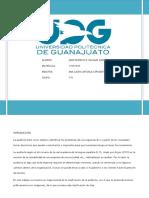 Mapa Mental de Las Clasificaciones de Las Auditorias_VillegasGarcía_17031336