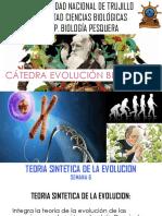 SEMANA 6 TEORIA SINTETICA DE LA EVOLUCION.pptx