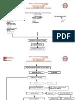 General Pathophysiology of Leptospirosis 1 (Autorecovered)