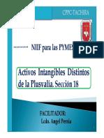 INTANGIBLES SECCION 18.pdf