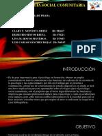ROL DEL PSICÓLOGO COMUNITARIO.ppsx