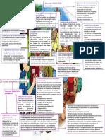 Mapa conceptual de documentos curriculares nacionales