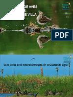 EDAM - Pantanos de Villa