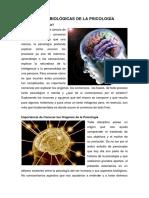 Bases Biológicas de La Psicologí1