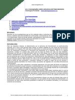 Domiínguez Fernandez - 2009 - Fundamentos Teóricos y Conceptuales Sobre Estructura de Financiamiento-Annotated