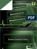 pruebasdelaboratorio-101124141311-phpapp01