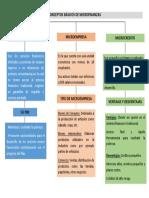 Conceptos Básicos de Microfinanzas