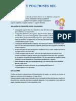 reglas y posiciones del voley.docx