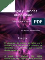 Pp 9 Calculo de Energia