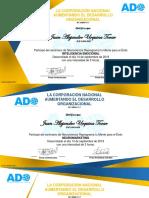 Certificado Neurociencia - Juan Alejandro Urquina Tovar