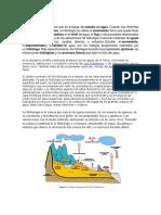 QUE ES LA HIDROLOGIA.docx