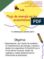 CIENCIAS-+6º+A+Y+B+-+FLUJO+DE+ENERGÍA+EN+LOS+ECOSISTEMAS