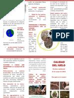 GESTION -folleto