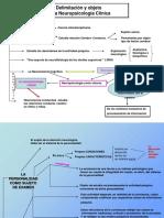Dx (f)  NEUROPSICOLOGIA.pptx