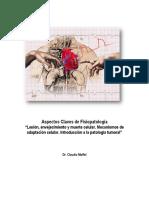 Guía Conceptos Claves de Fisiopatología