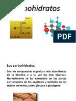 11 Clase Carbohidratos FMH.ppt