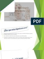 Medico Veterinario Zootecnista p2