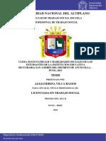 Vilca Ramos Alejandrina