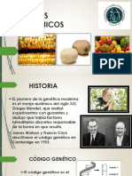 alimentostransgenicosppt-150619140709-lva1-app6892.pdf
