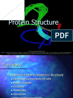 Lecture Presentation - Protein Structure.ppt