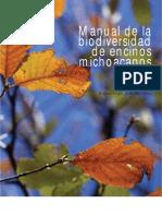 Encinos maqueta Álvaro 19 09 06
