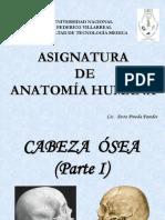 CABEZA ÓSEA I.pdf
