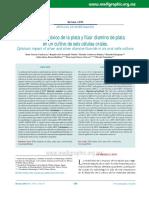 Impacto Citotóxico de La Plata y Flúor Diamino de Plata en Un Cultivo de Seis Células Orales.