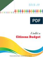 Citizen Budget.pdf