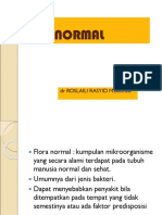 flora-normal-blok-2-2.ppt