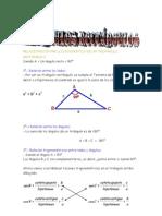 Matematicas Resueltos (Soluciones) Triangulos Rectangulos Nivel I 1º Bachillerato