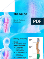 Spine Evaluation Powerpoint