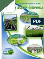 LECHUGAS-HIDROPÓNICAS-HIDROLECHUGAS.pdf