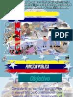 VI Función Pública