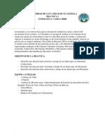 Practica No.3 Caida Libre (a) PDF