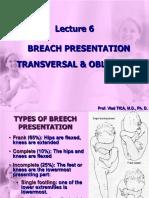 Lecture 6 Breach Presentation Transversal Oblique Lie