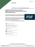 Myogenic Differentiation Potential of Mesenchymal Stem Cells Derived from Fetal Bovine Bone Marrow