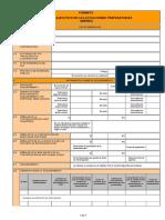 Directiva 04-2019-OSCE.cd Formato Resumen Ejecutivo (1)