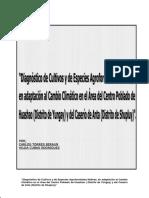 Diagnostico de cultivos y forestales Yungay-2009.pdf