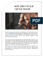 Sustanon 250 Cycle for Muscle Mass - Alphapharm Canada
