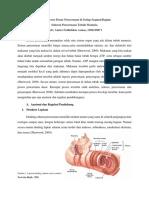 Empat_Proses_Dasar_Pencernaan_di_Setiap.pdf