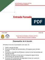 Tema 30.- Entrada Forzada (DP).pptx