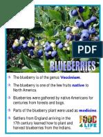 Blueberries 9C799D34DC7E1