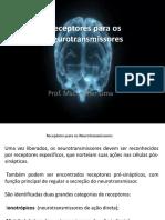 Receptores Para Os Neurotransmissores