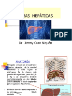 perfil hepatico exp 2016.ppt