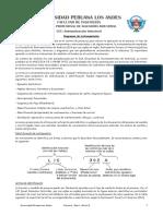 Automatización Industrial 2014-II (7).pdf