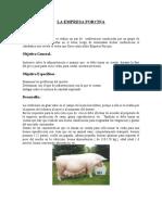 La Empresa Porcina