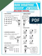 Habilidad Visual RM