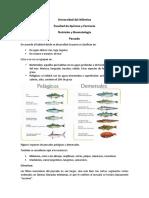 Pescado.docx